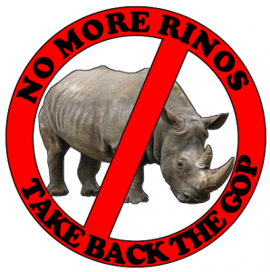 No More Rinos - Take Back The Gop