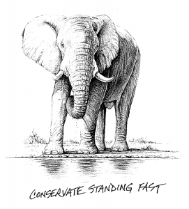 conservate-standing-fast