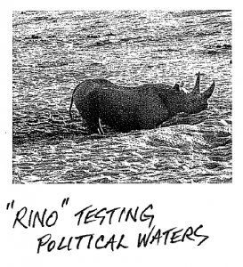 rino-testing-political-waters